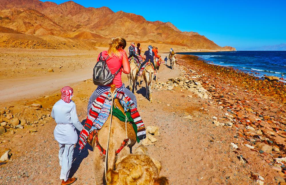 Aramex Travel (37)